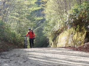 自転車アプローチ